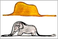 boa-elefante